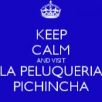 Logo La Peluquería Pichincha